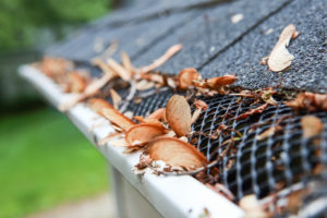 Benefits of Installing Gutter Guards on My Houston Home